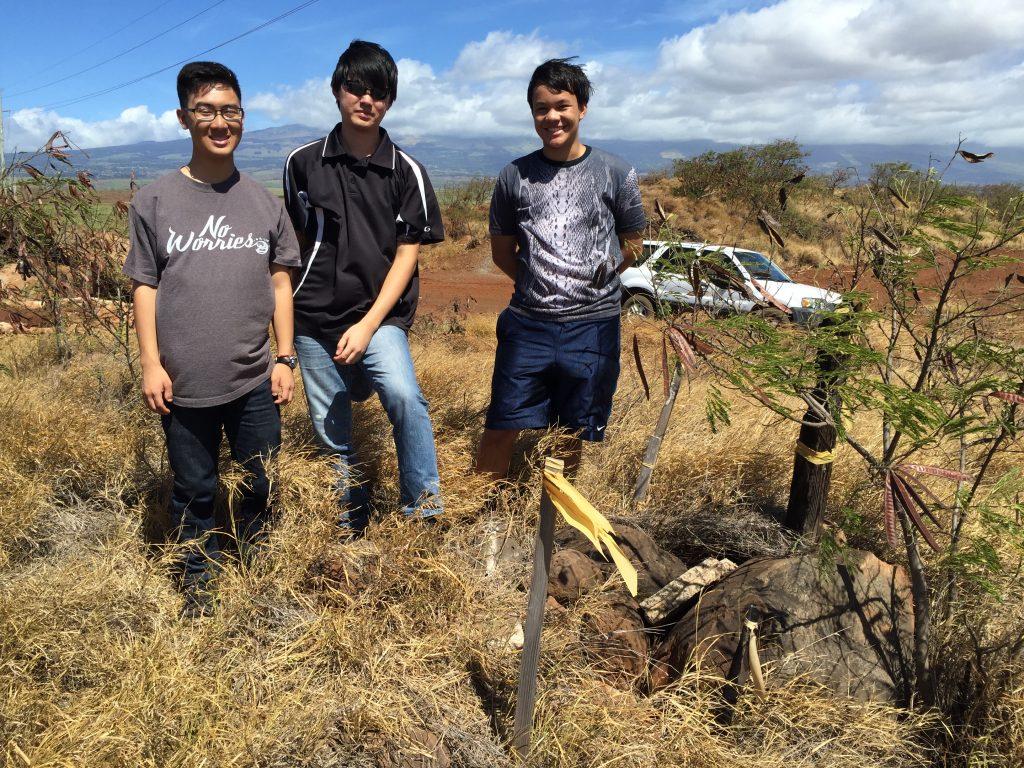 A&B Properties Orlino and Christian in the field. Image courtesy: STEMWorks/Maui Economic Development Board.