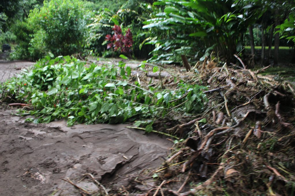 ʻĪao Valley, erosion and flood debris from flash flood. PC: 9.14.16 by Wendy Osher.