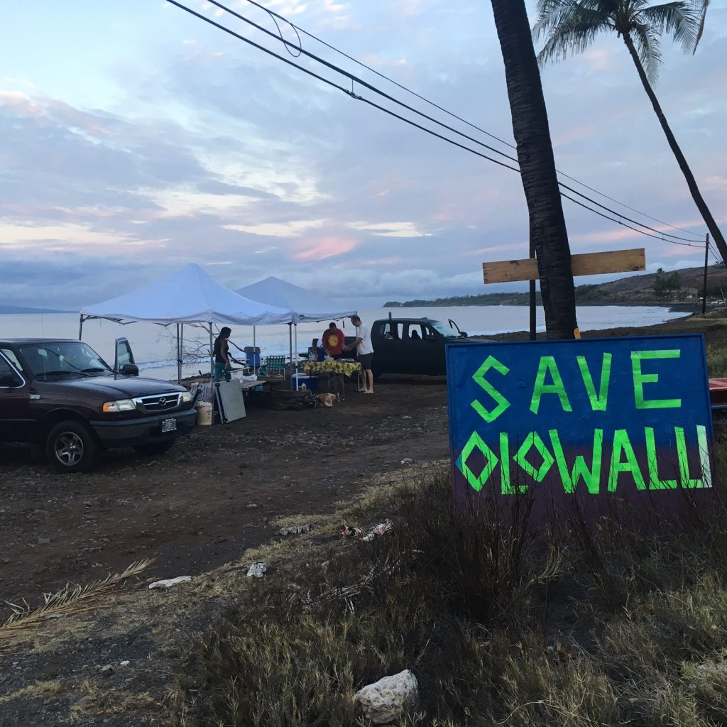 Seawall protest at Olowalu. PC: Albert Perez.