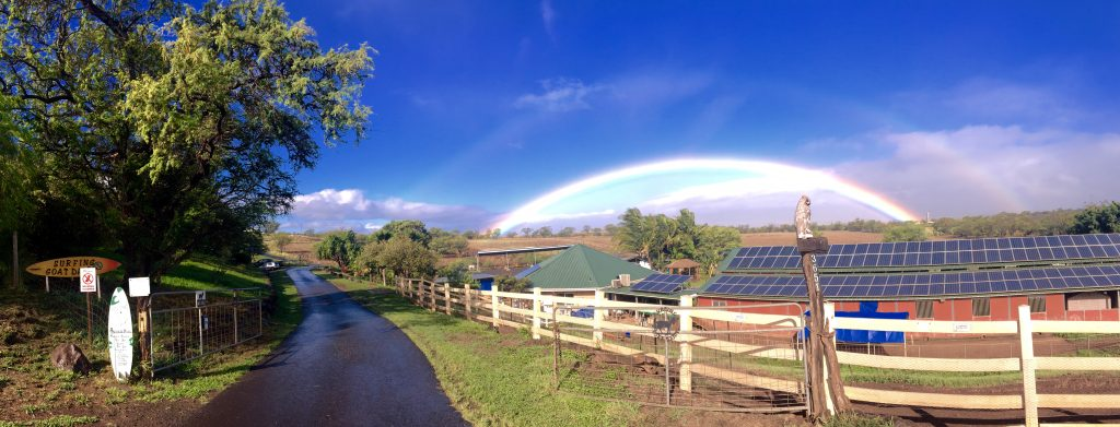 """Here's a pic of the Surfing Goat Dairy with the perfect depiction of """"The Calm Before The Storm"""" PC: Lucas Board"""