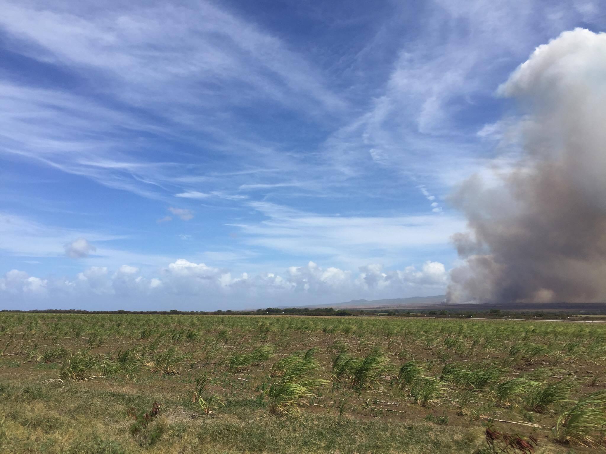 Puʻunēnē brush fire. Photo credit: Timothy Lara