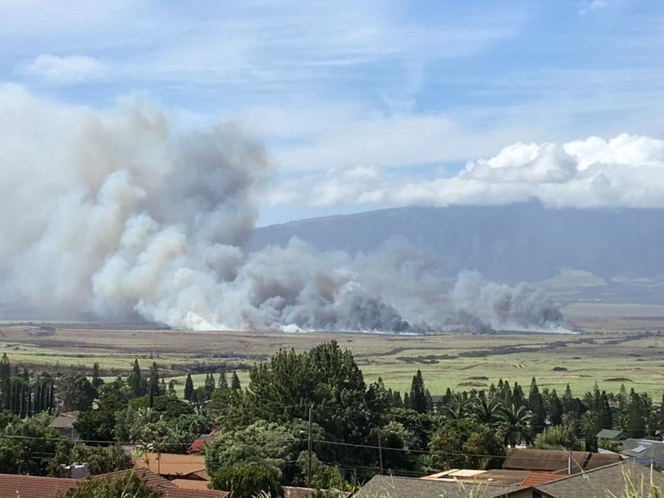 Omaopio/Pūlehu brush fire. PC: Cheryl Rafael Jarrell