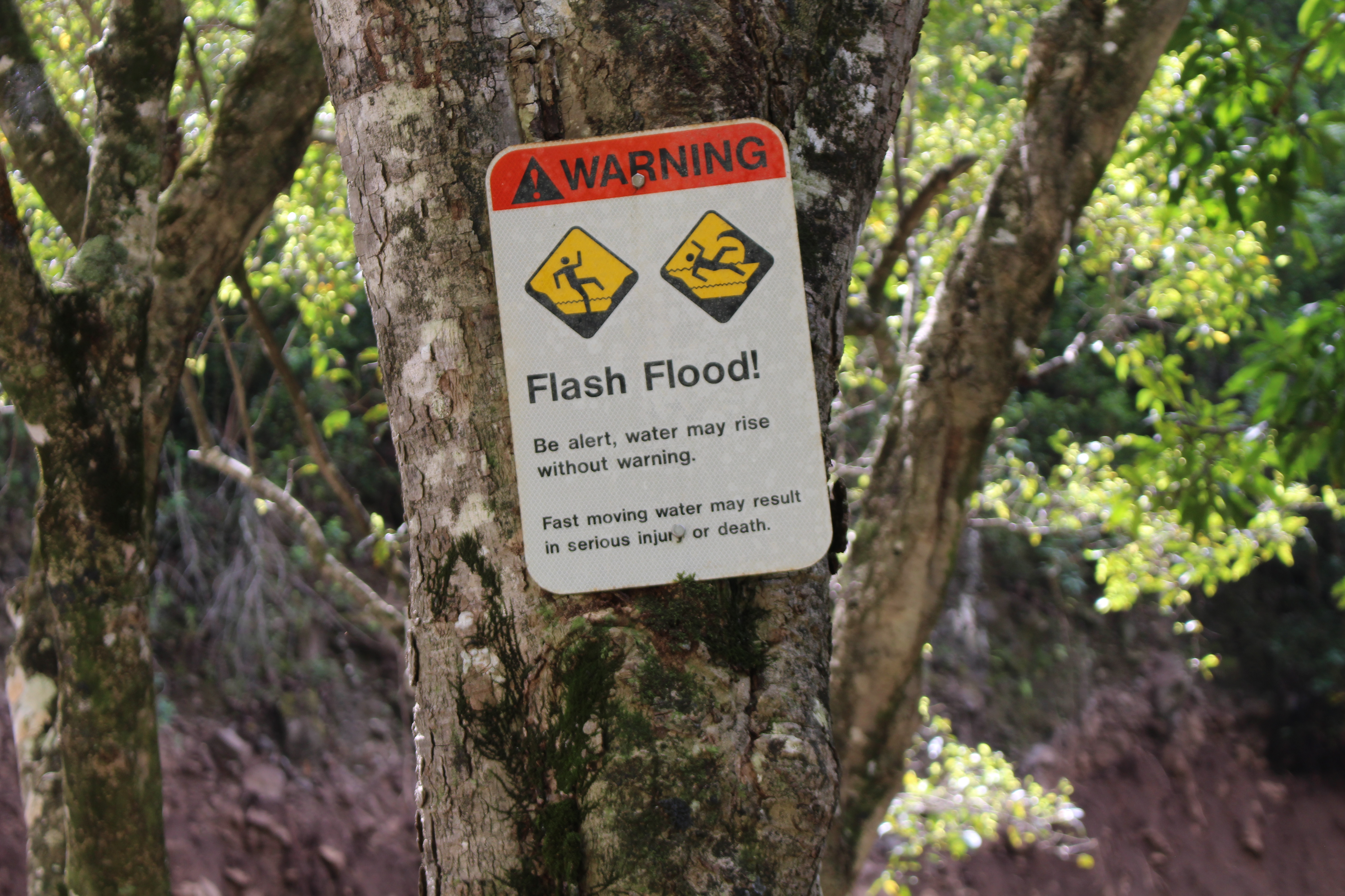 Flash flood warning issued for Kauai
