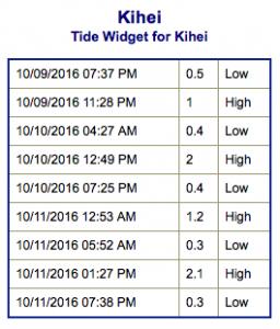 screen-shot-2016-10-09-at-8-47-30-pm