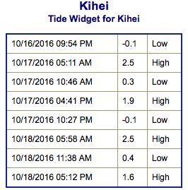 screen-shot-2016-10-16-at-10-28-59-pm
