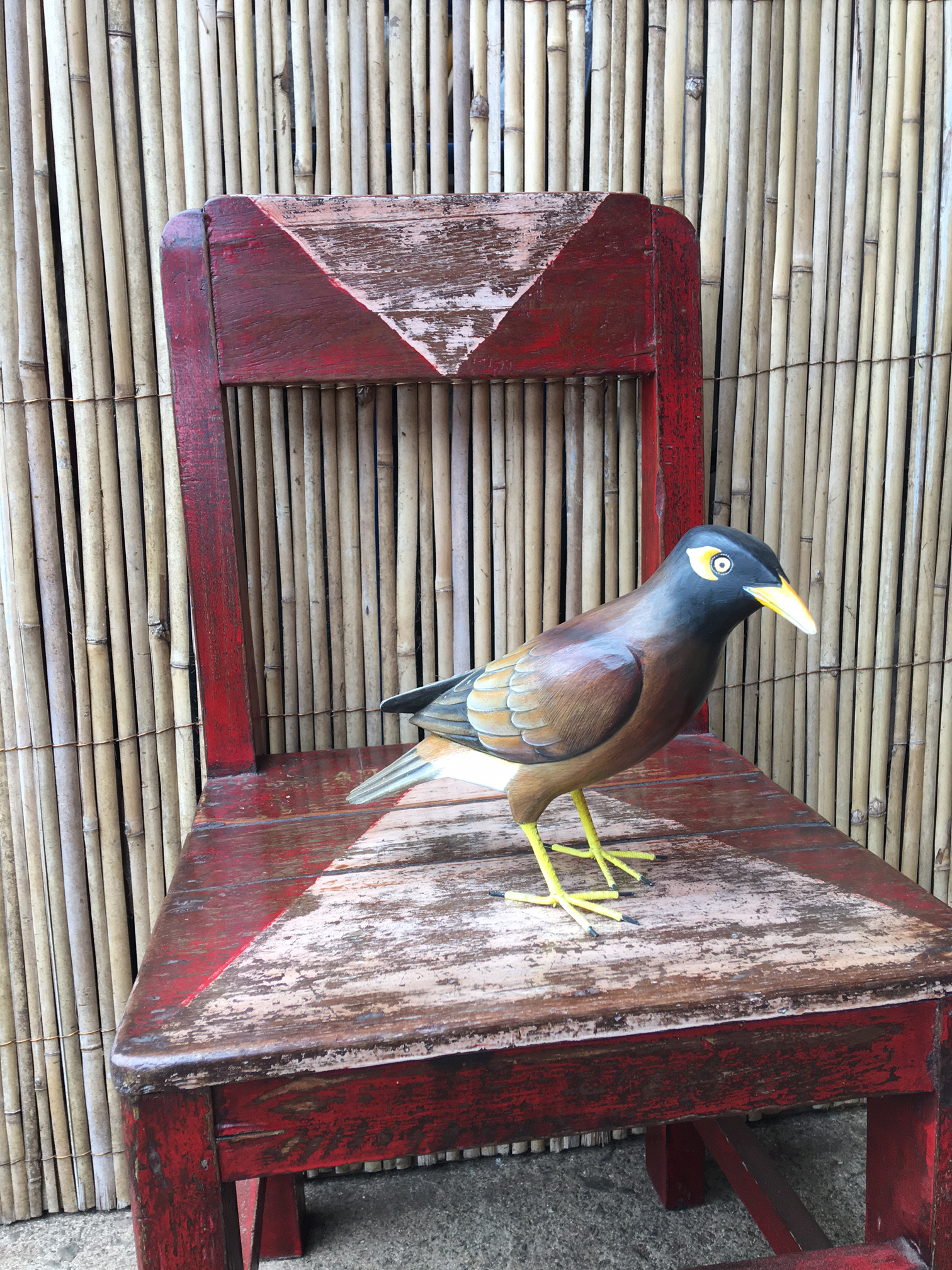 Duck Soup Maui exported goods from Bali. Mynah and chair.
