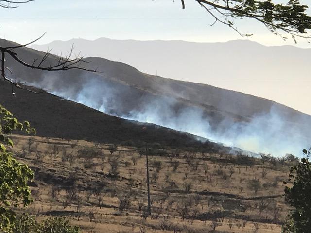 Olowalu brush fire 11.23.16. PC: Kaila.