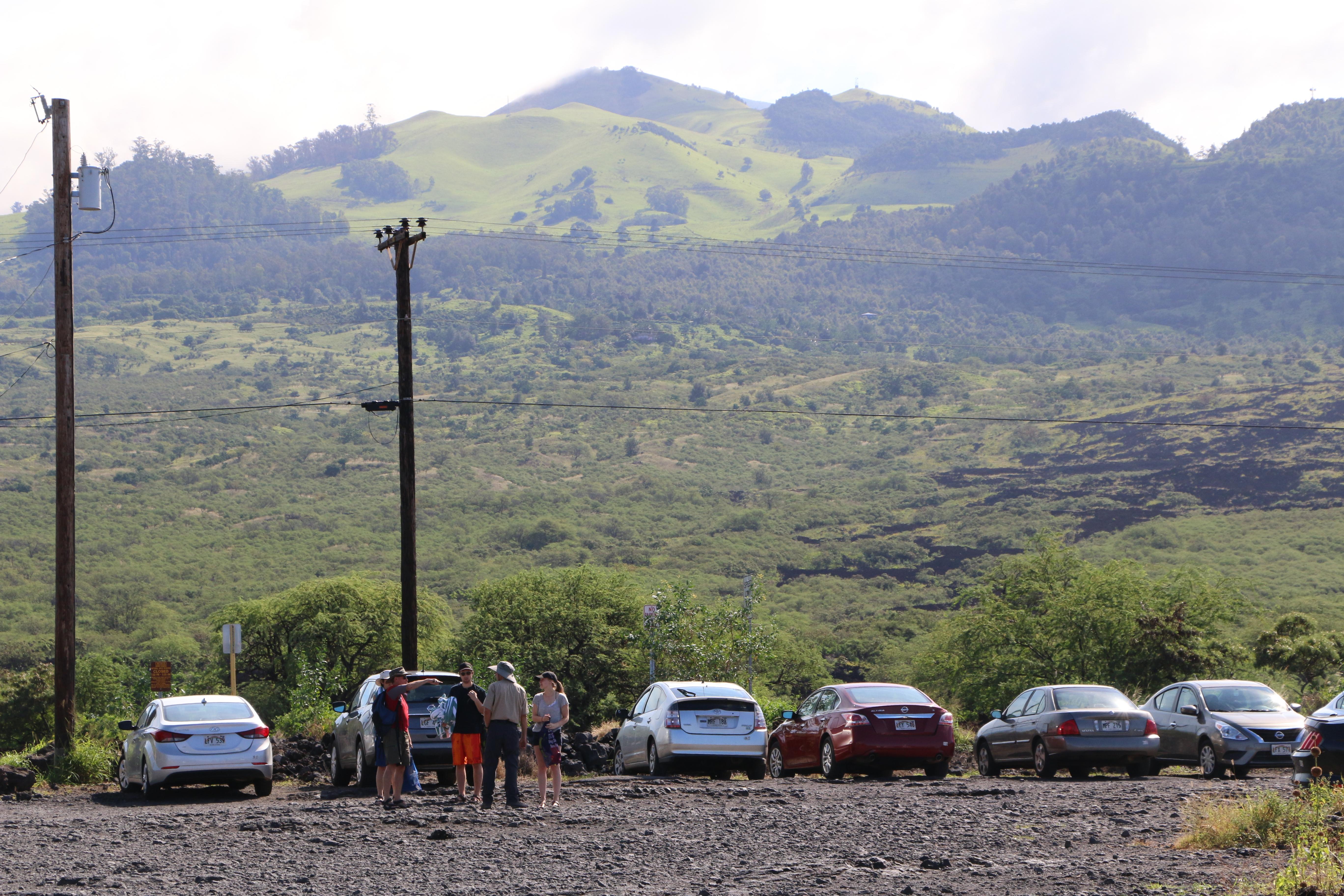 ʻĀhihi-Kinaʻu Natural Area Reserve. Image: DLNR.