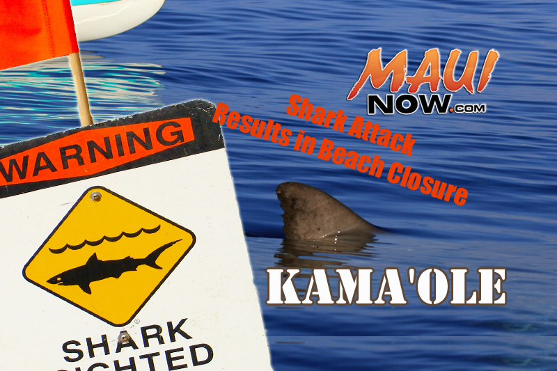 Shark attack reported at Kama'ole in South Maui. Maui Now graphic.