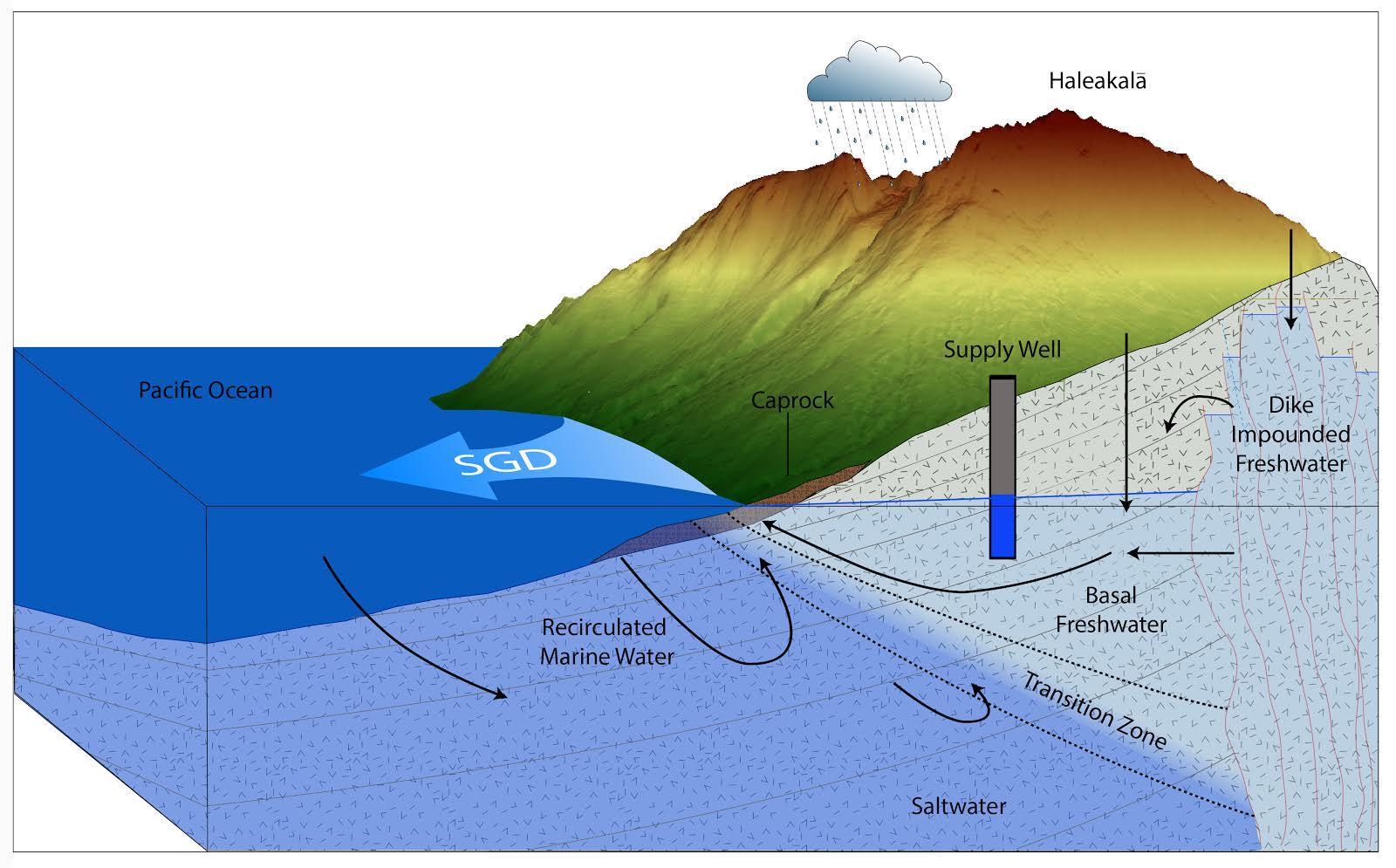 Schematic of submarine groundwater discharge. Credit: Bishop, et al. (2015)