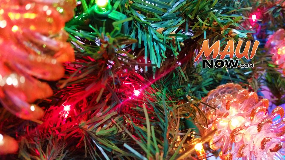 Christmas Tree. Maui Now photo.