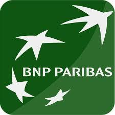 Stock options bnp
