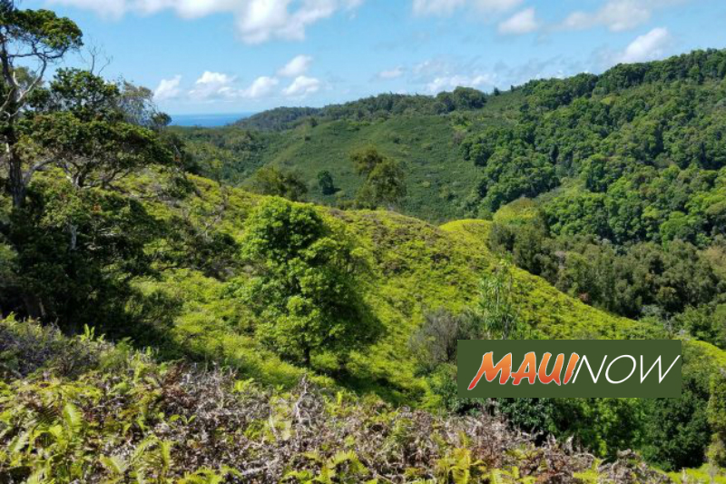 Two Month Closure: Kula Forest Reserve & Polipoli