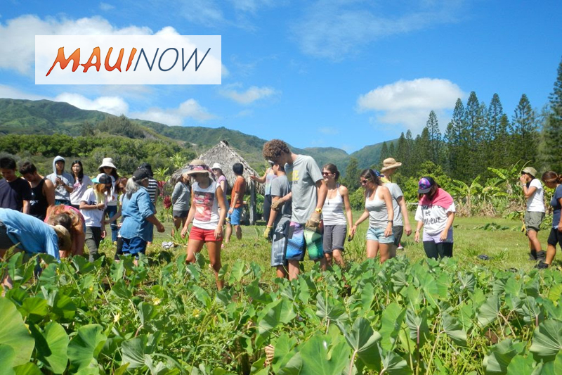 18 Maui Farm Apprentices Graduate from Mentor Program