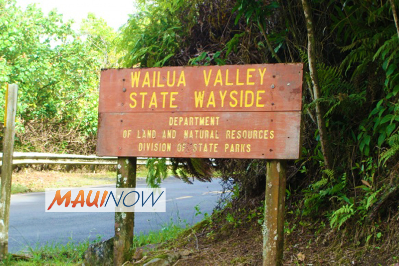 Injured Hiker Airlifted From Wailua Falls Trail