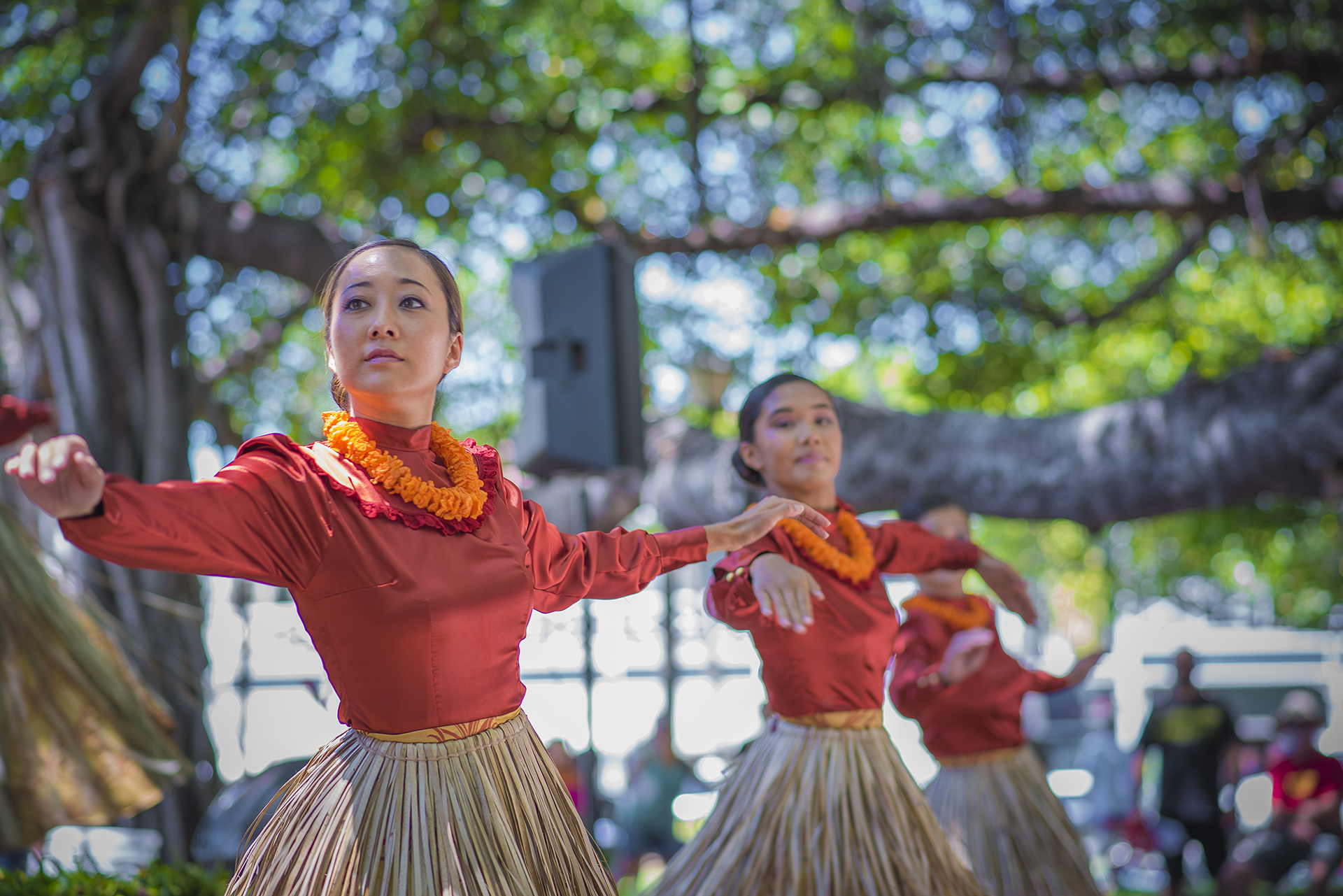 OHA Releases Grant Solicitations for $340,000 to Mālama Iwi Kupuna and Support Community Events