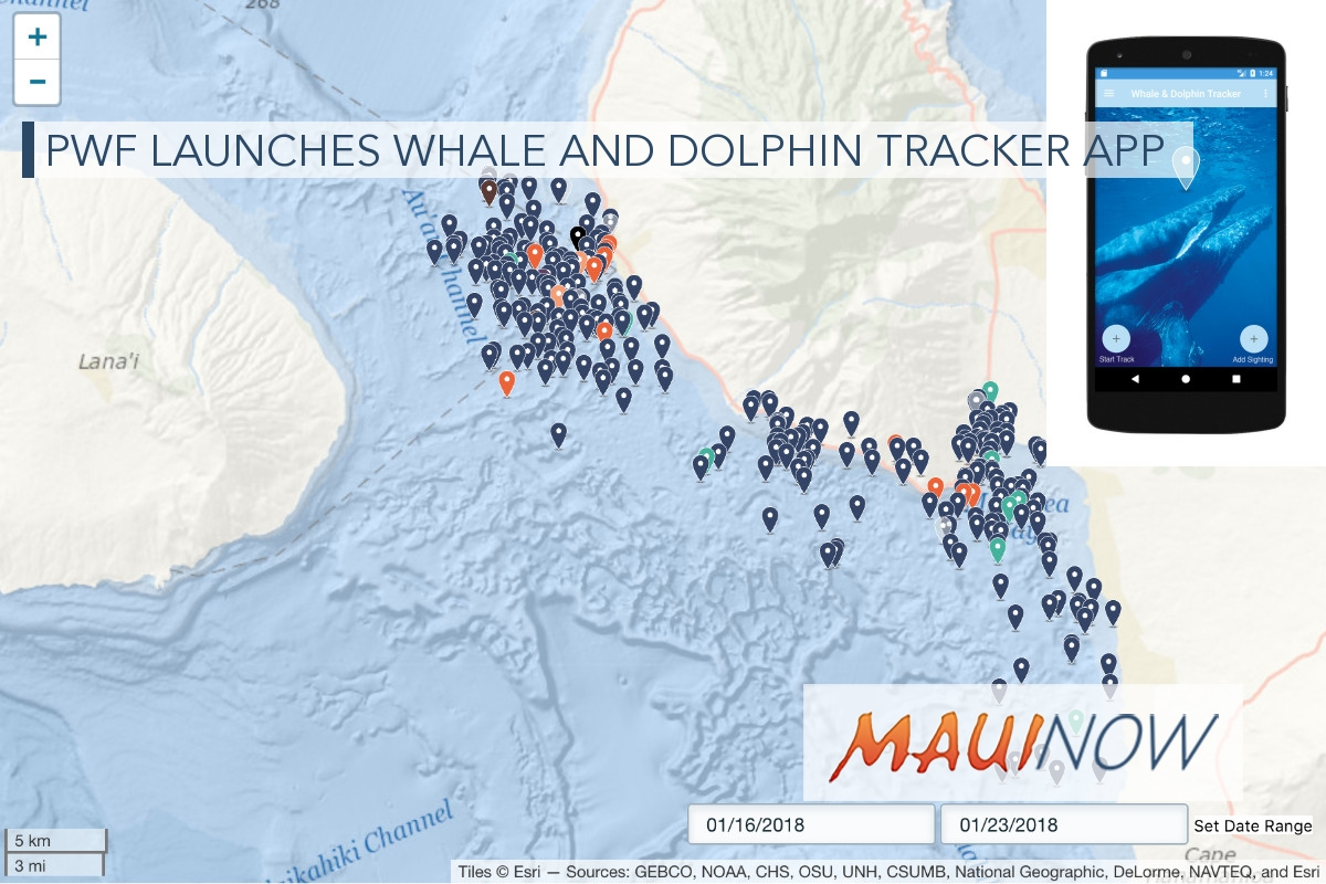 PWF Launches Whale and Dolphin Tracker App