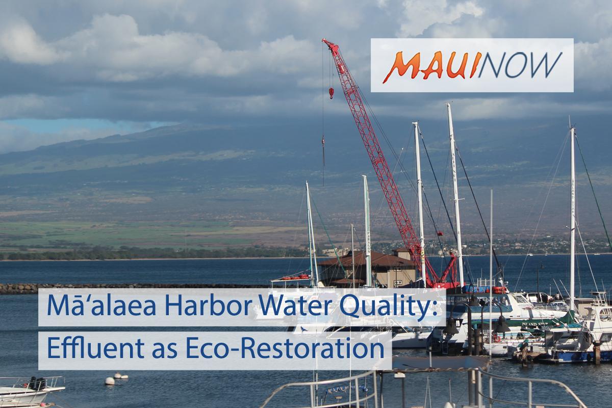 Mā'alaea Harbor Water Quality: Effluent as Eco-Restoration