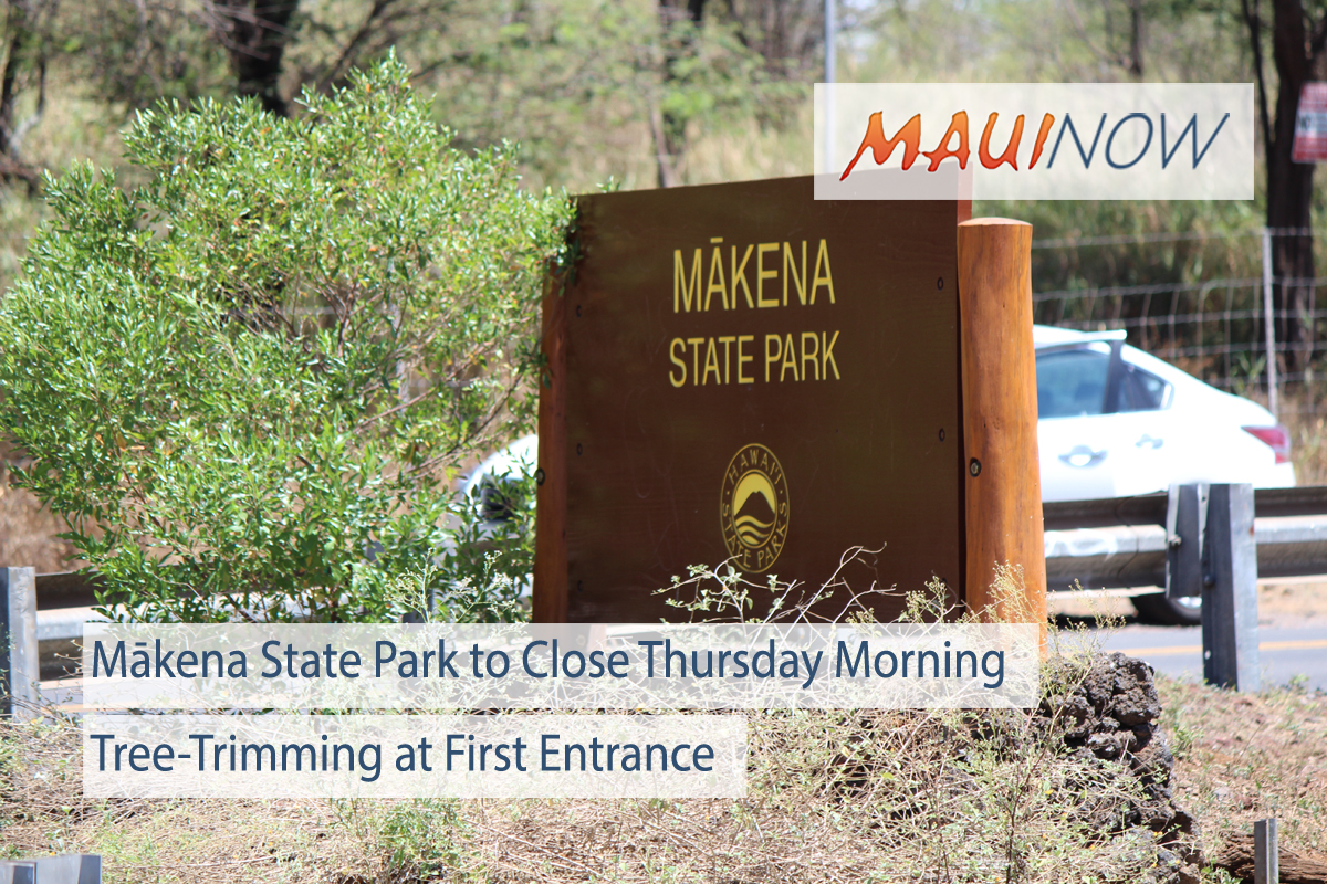 Mākena State Park to Close Thursday Morning for Tree-Trimming