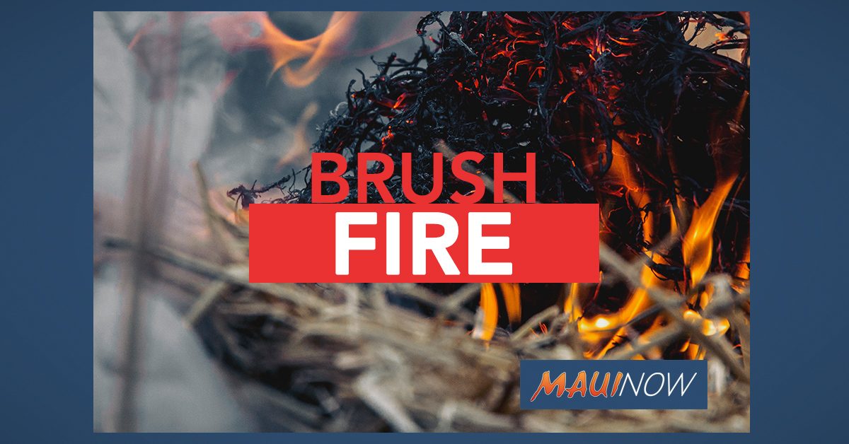 Kapalua Brush Fire Burns Two Acres