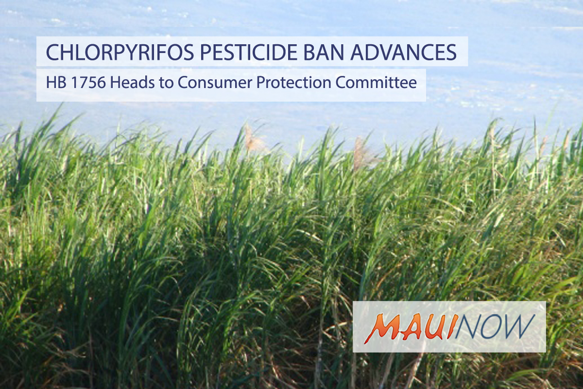 Committees Advance Bill for Ban on Chlorpyrifos Pesticide