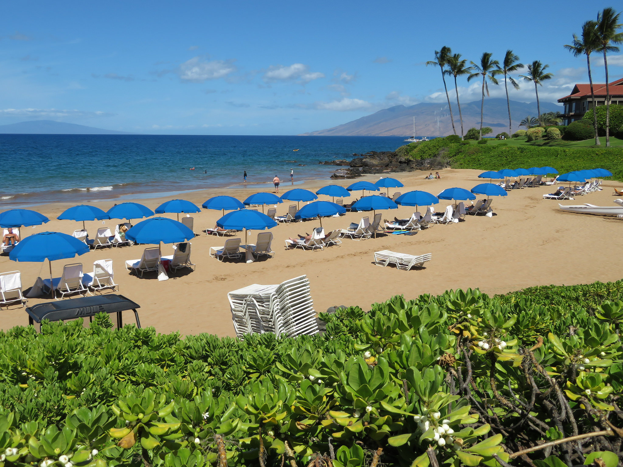 Maui Hotels Top State in Revenue For February