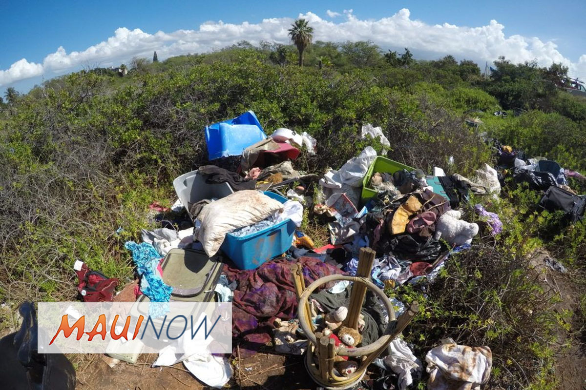 Lā'ie Wetlands Cleanup in Kīhei, March 10