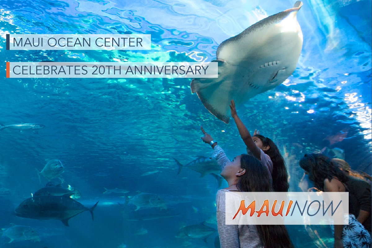 Maui Ocean Center Celebrates 20th Anniversary, March 18