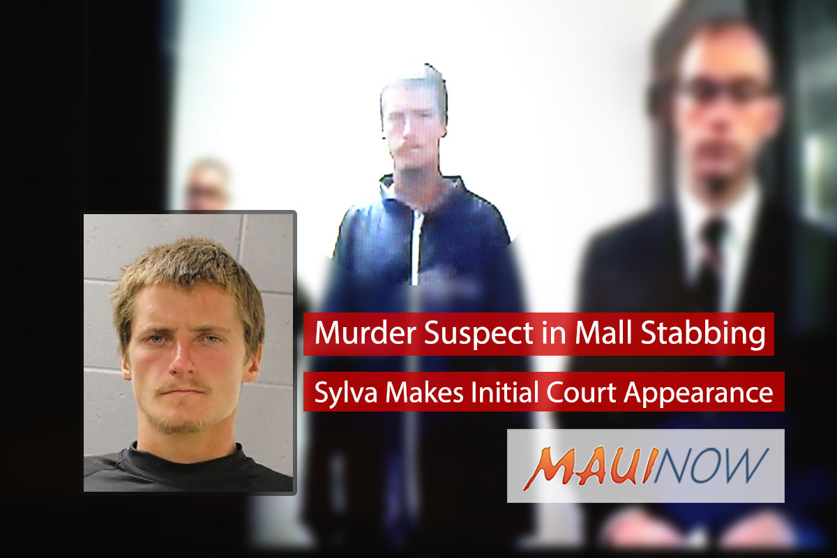 Murder Suspect in Mall Stabbing Makes Initial Court Appearance
