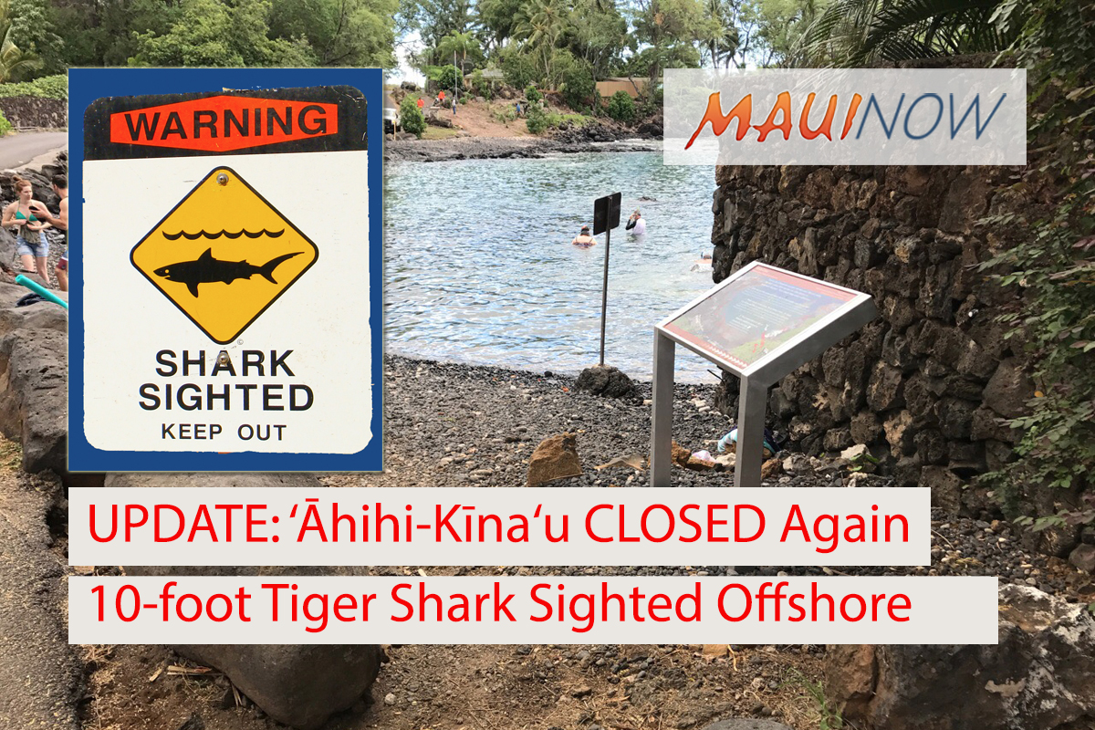 UPDATE: 'Āhihi-Kīna'u CLOSED Again, 10-Foot Tiger Shark Sighted