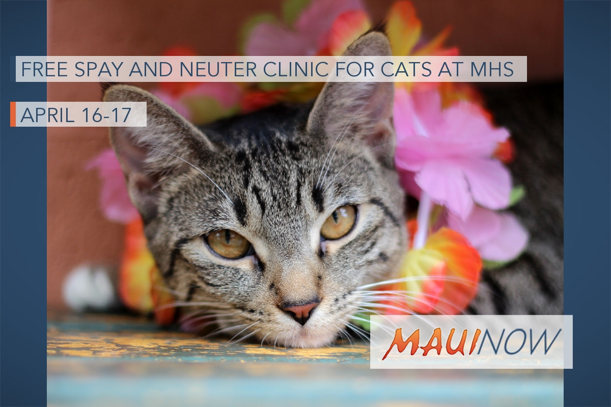 Free Spay and Neuter Clinic for Cats at MHS, April 16-17