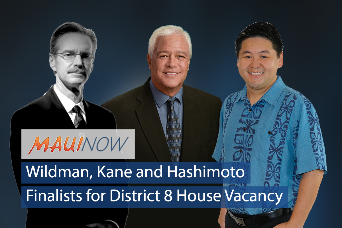 Hashimoto, Kane and Wildman Finalist for District 8 House Vacancy