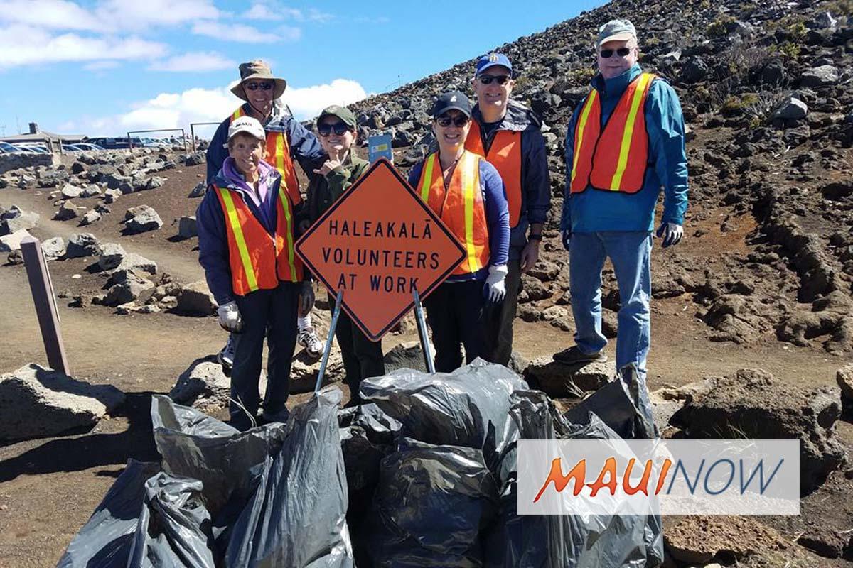 6,342 Invasive Pines Removed at Haleakalā, Volunteers Sought