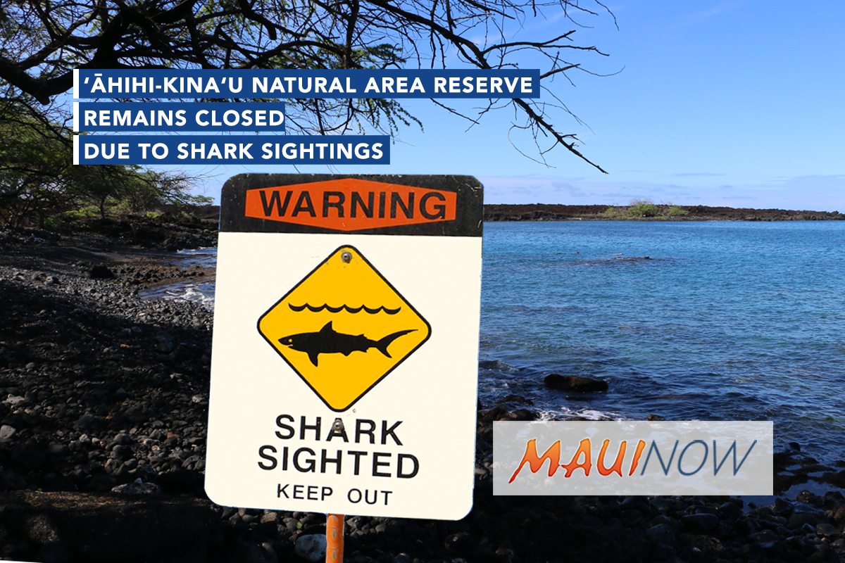 'Ahihi-Kina'u Remains Closed Due to Continued Presence of Sharks