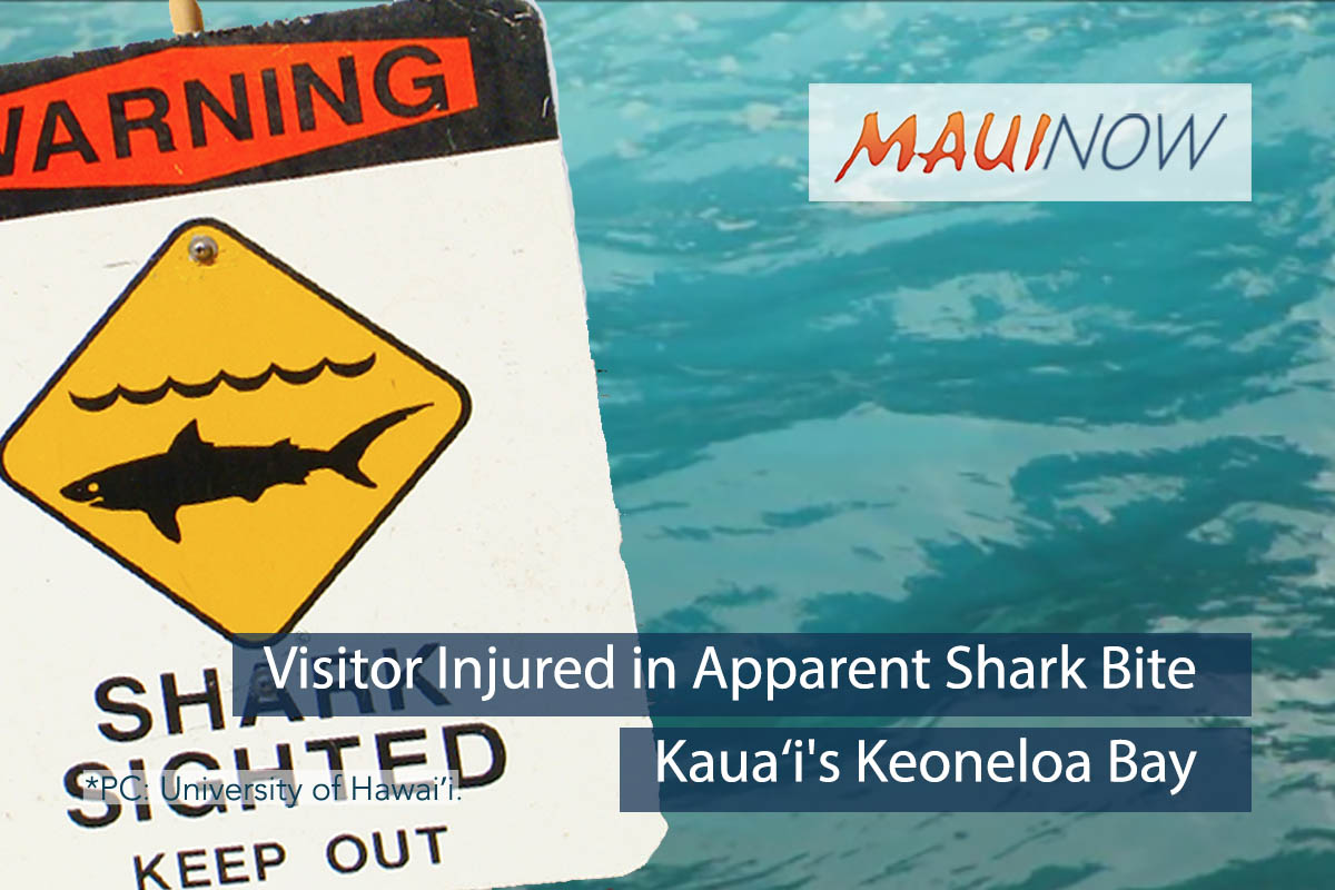 Visitor Injured in Apparent Shark Bite at Kaua'i's Keoneloa Bay
