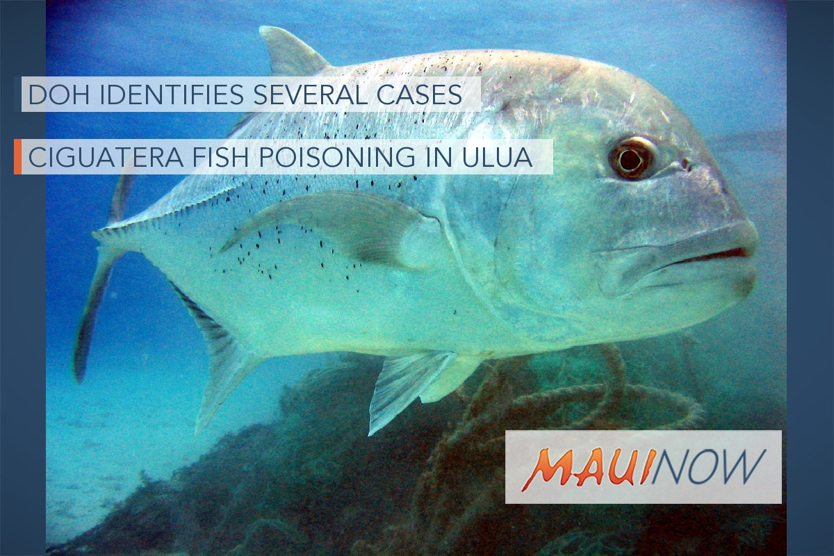 DOH Identifies Several Cases of Ciguatera Fish Poisoning in Ulua