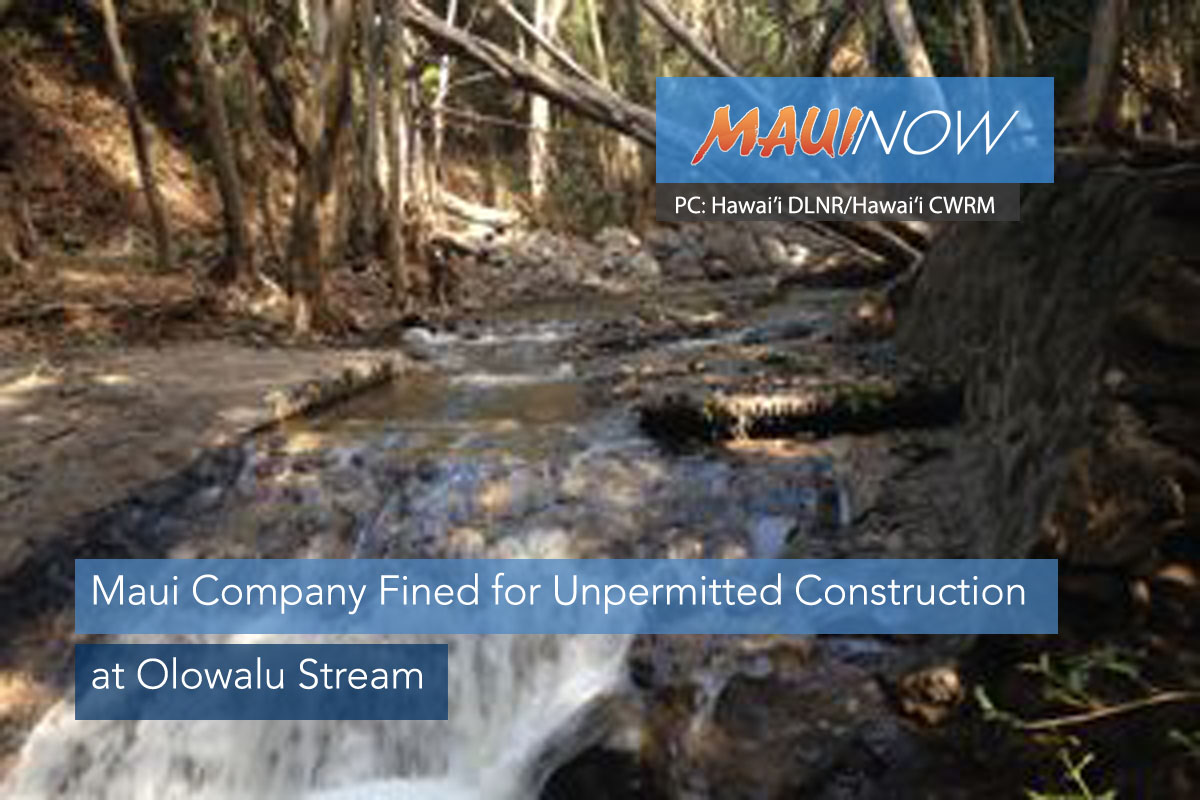 Maui Company Fined for Unpermitted Construction at Olowalu Stream