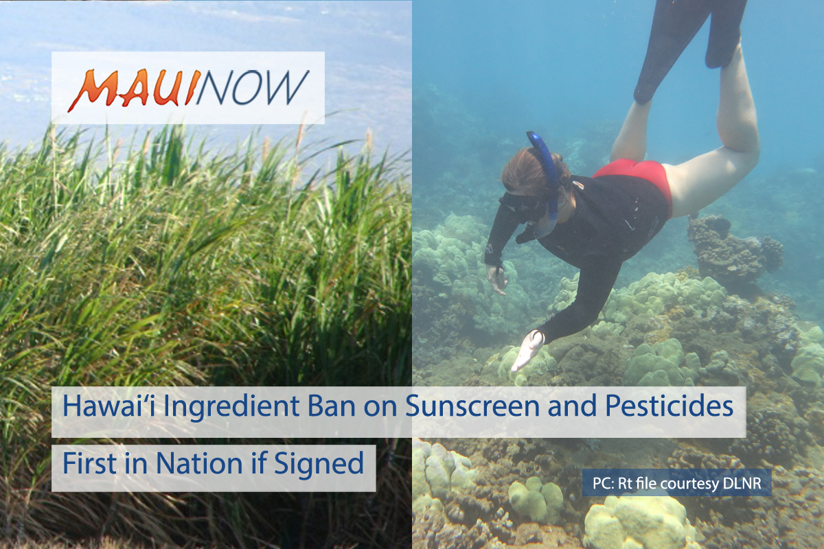 Hawai'i Ingredient Ban on Sunscreen and Pesticides, First in Nation if Signed