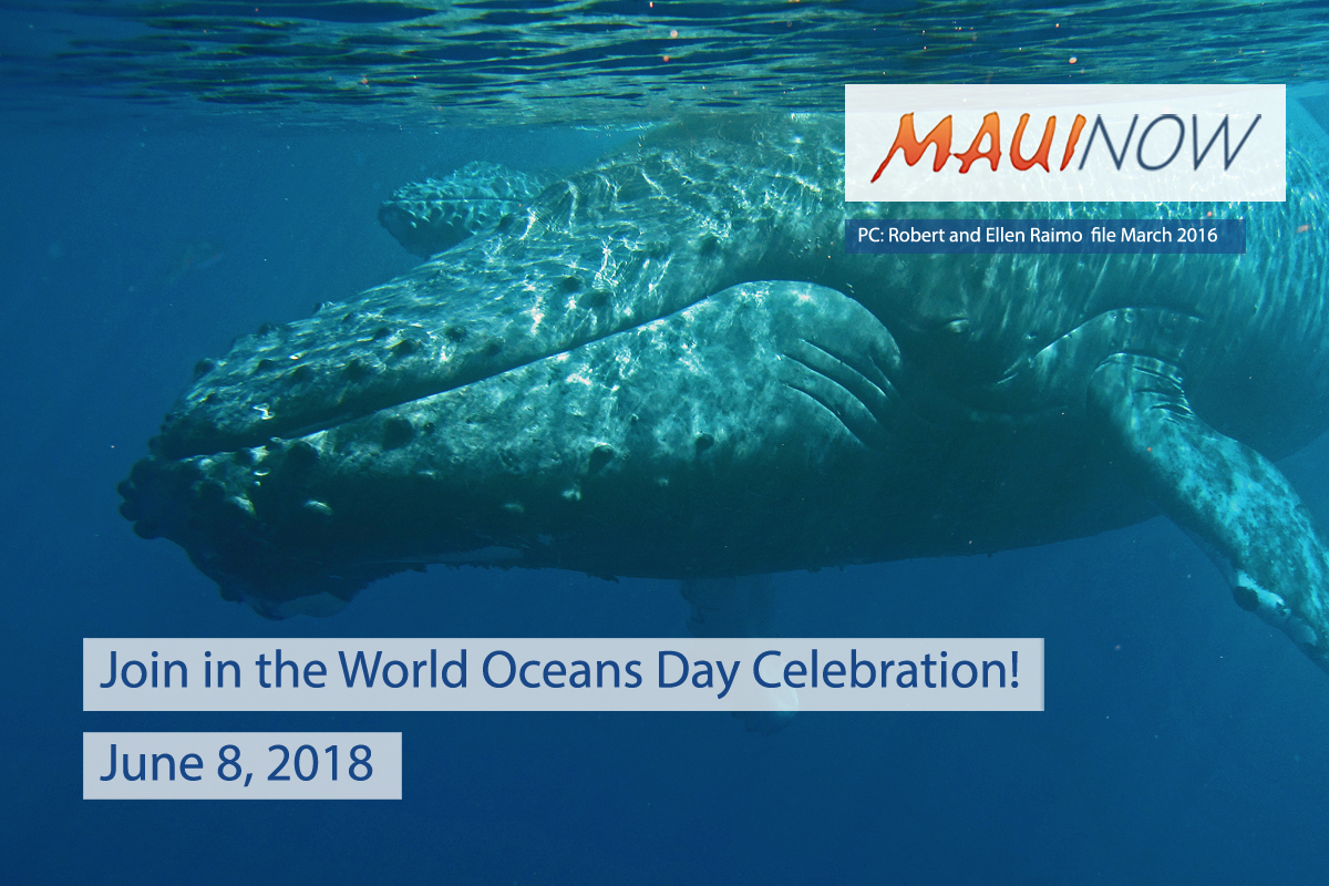 Ways to Celebrate World Oceans Day on Maui