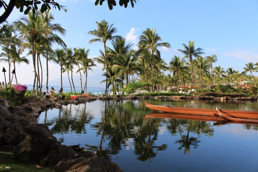 Maui Now : Hawaiʻi Tourism Authority Hotel Performance