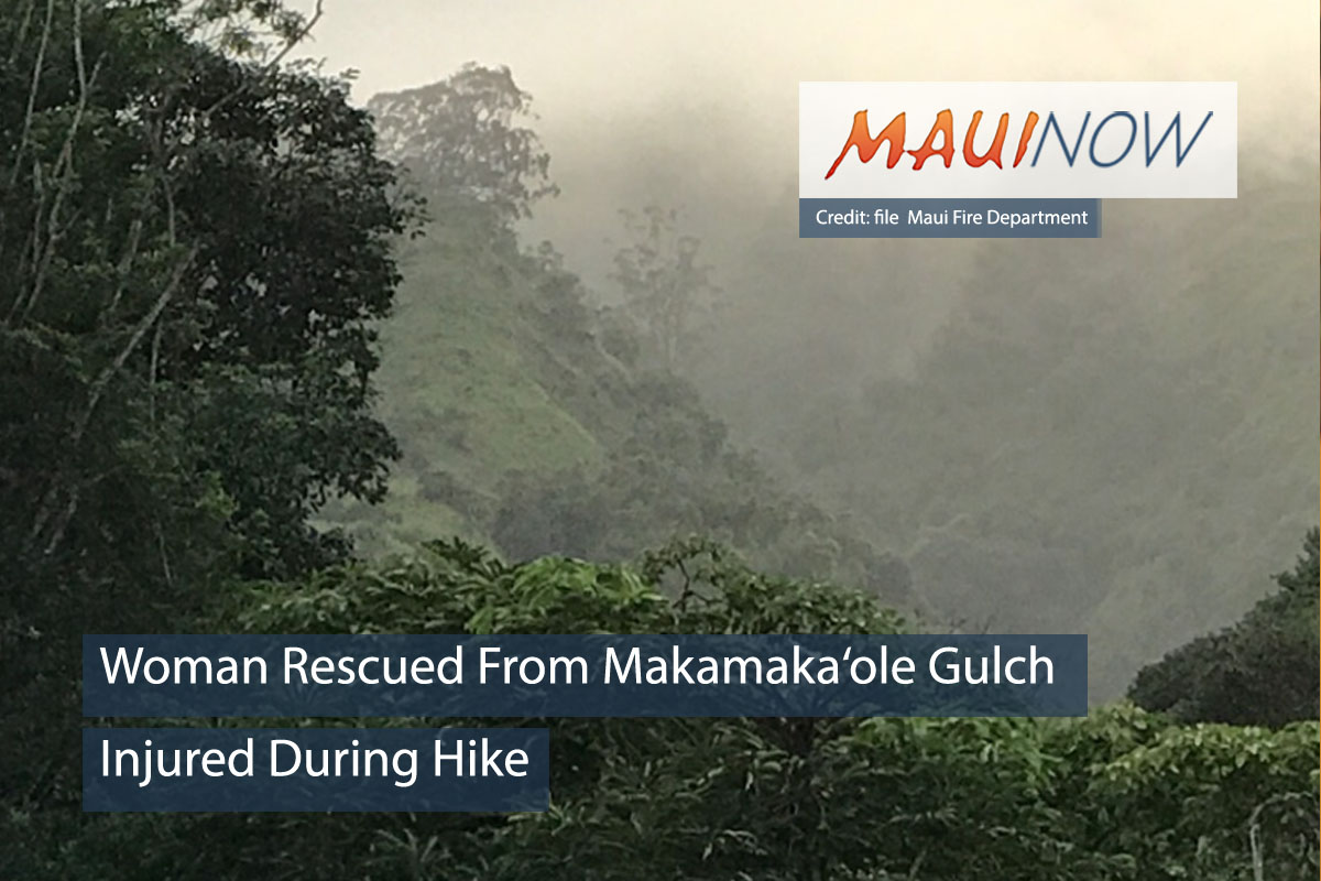 Maui Firefighters Rescue Hiker From Makamaka'ole Gulch
