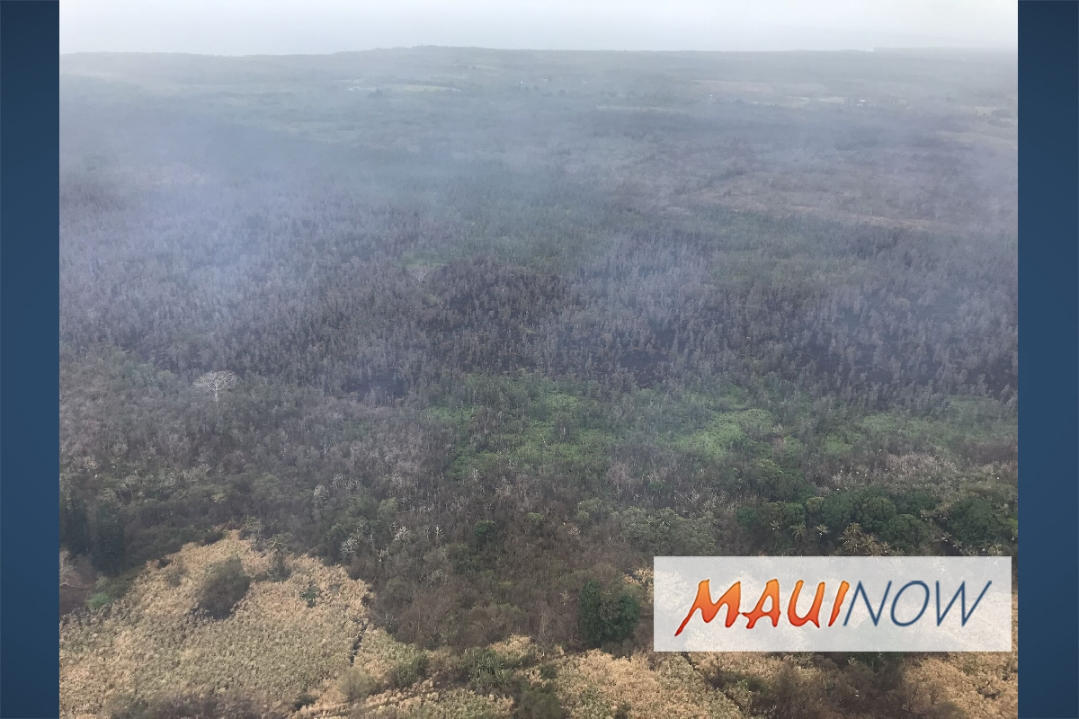 Malama Kī Forest Reserve Impacted by Eruption