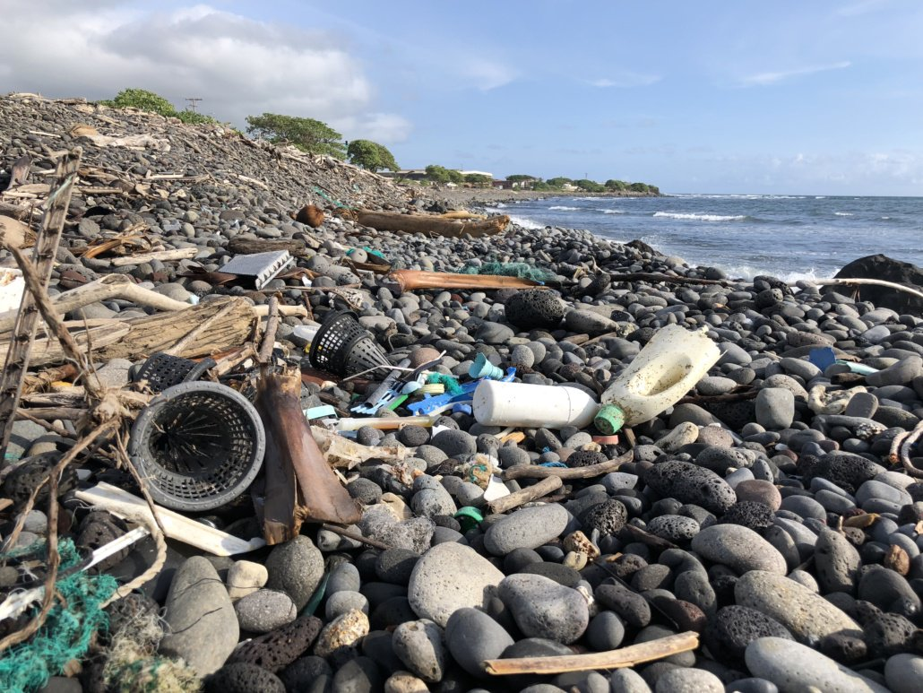 "Lawsuit Launched Over ""Failure to Recognize Plastic Pollution"" in Hawaiian Waters"