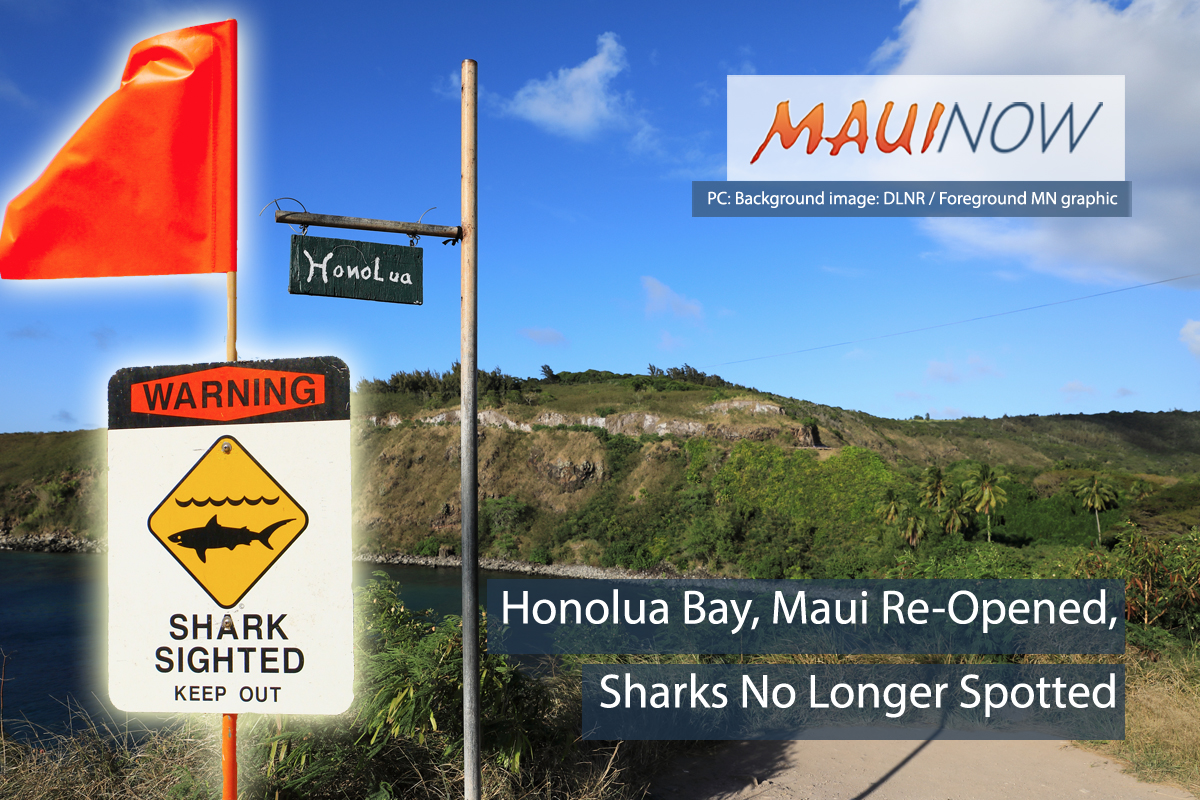 Honolua Bay, Maui Re-Opened, Sharks No Longer Spotted