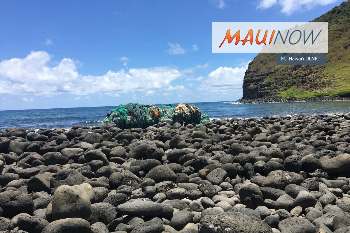 Large Net Mass Removed from Hālawa Moloka'i
