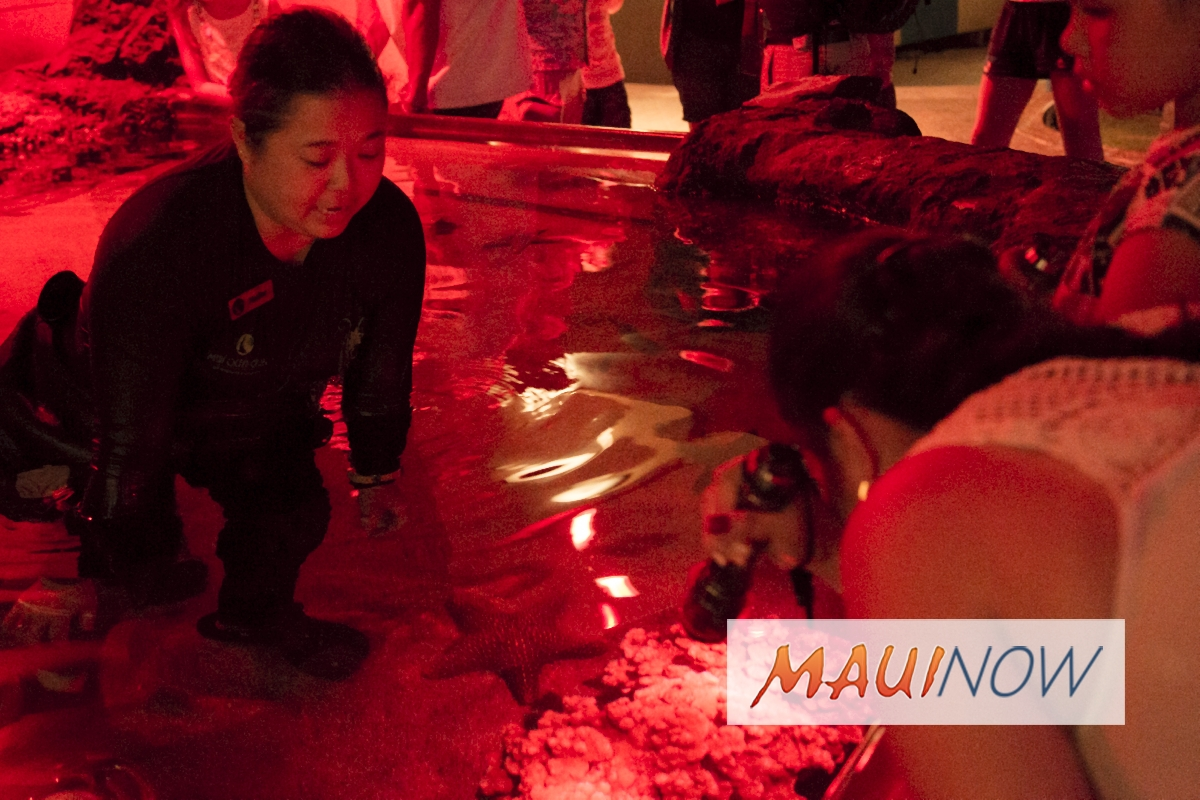 Coral Spawning Wows Guests at Maui Ocean Center