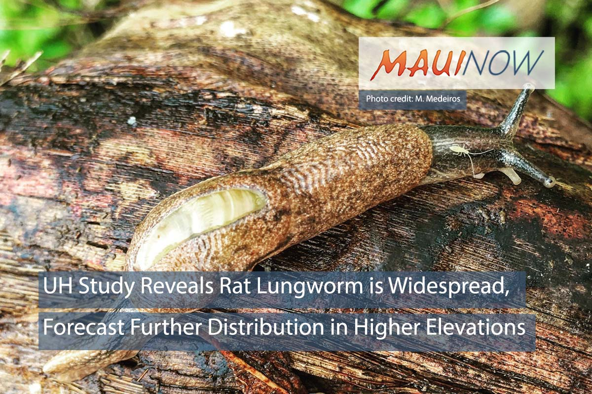 UH Study Reveals Rat Lungworm is Widespread