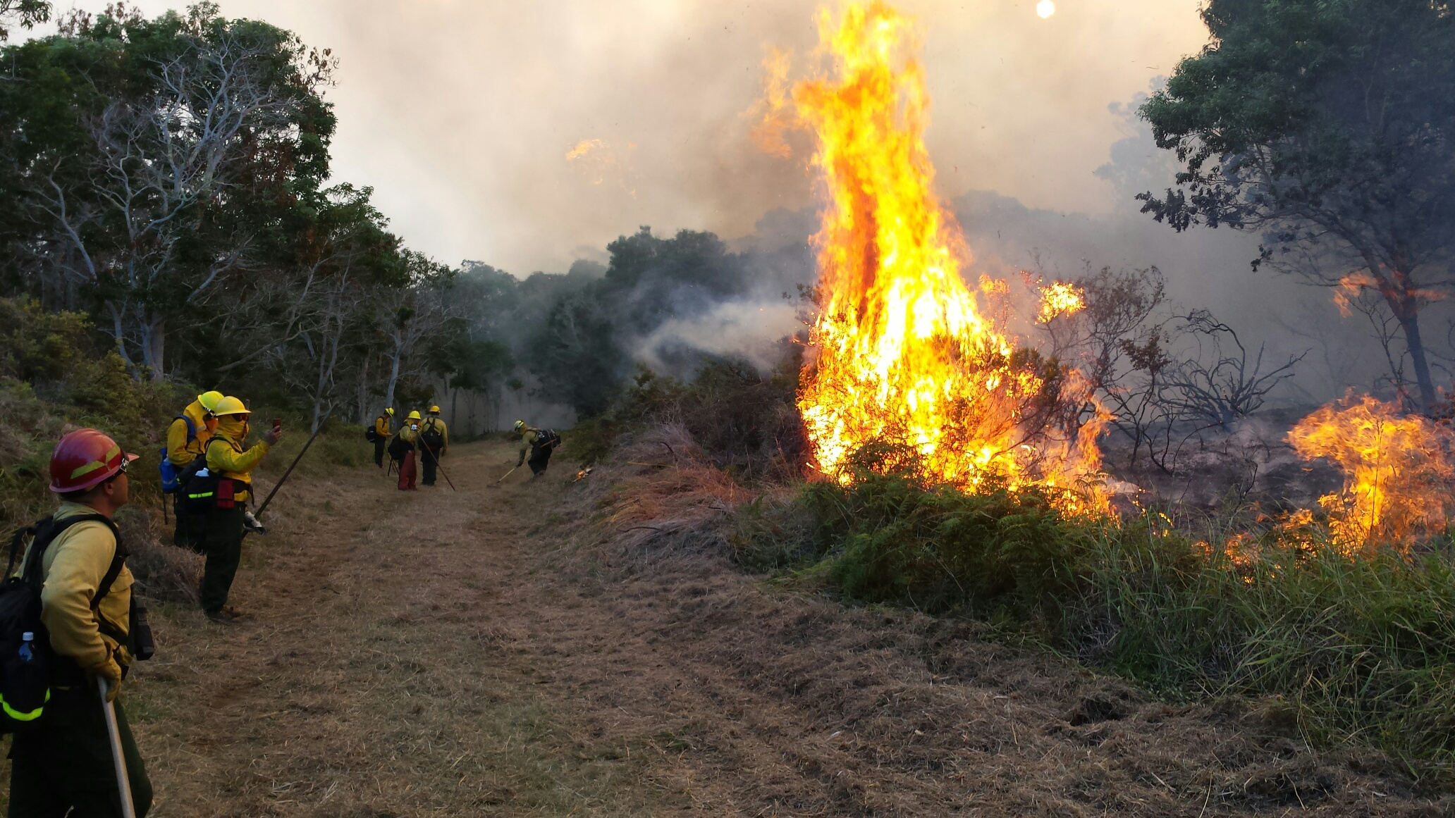 Keauhou Ranch Fire Grows to 1,495 Acres