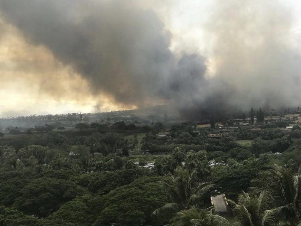 maui fire - photo #16