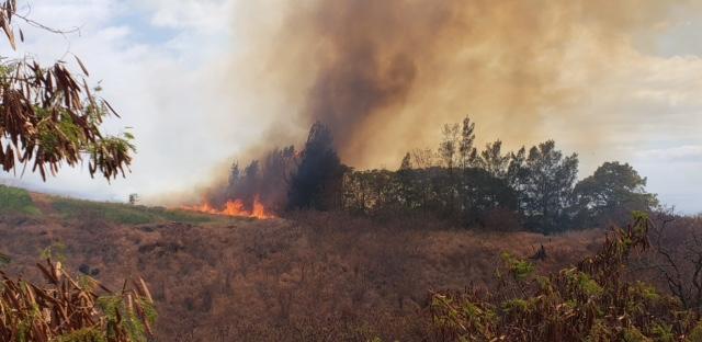 UPDATE: Brush Fire at Kula Ag Park